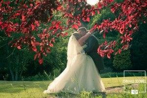 Keryl and Daniel Ponsbourne Park (7)