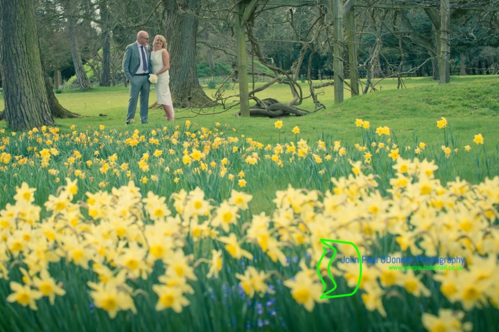 Daffodils in the Gardens at Fanhams Hall