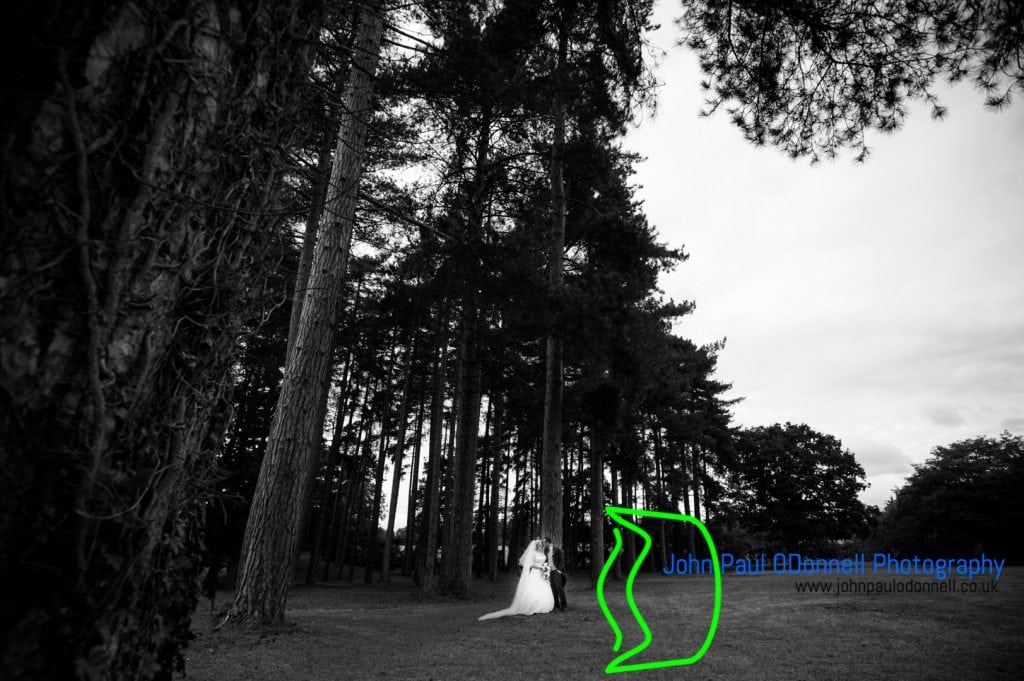 This image is of the bride and groom by the high trees on their wedding day in the grounds of fanhams hall.